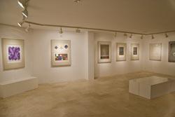 Sala de exposiciones: Arte Geometrico en el museo