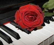 El amor en Mozart y Schumann